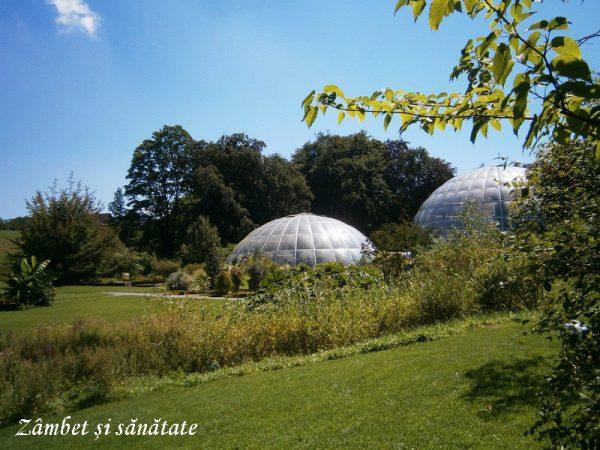 gradina-botanica-zurich-sere
