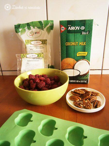 ingrediente-inghetata-vegana-de-cocos