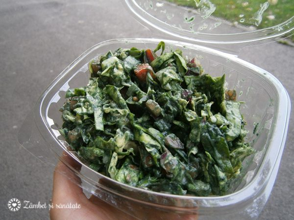salata-cu-guacamole-si-spirulina-sara-green