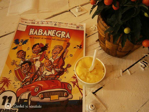 habanegra-concert-puro-bio-inghetata
