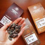 Boabele de cacao crude, un deliciu extrem