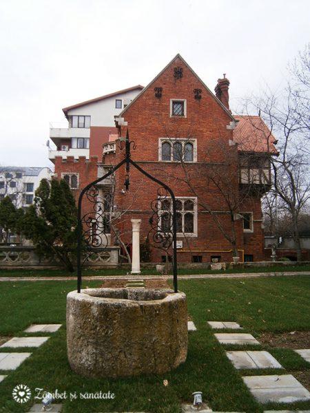 fantana muzeu minovici