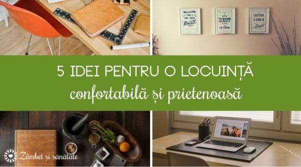 5 idei pentru o locuință confortabilă și prietenoasă