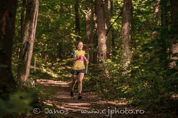 fox trail half marathon 2017