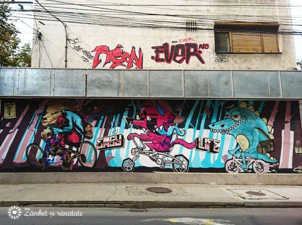 arta urbana timisoara