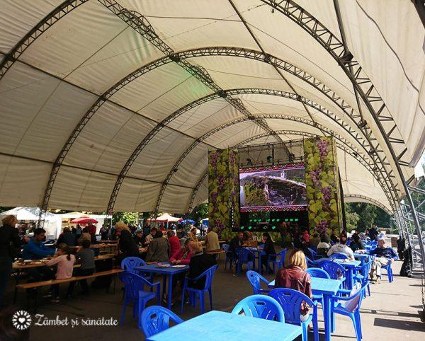 festivalul tulburel 2017 chisinau moldexpo