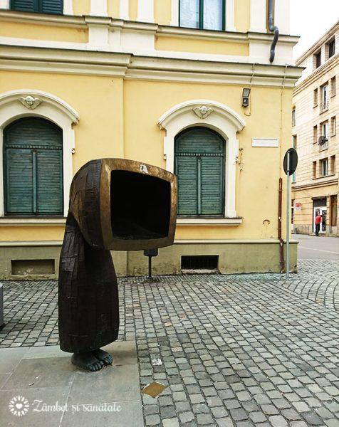 timisoara arta pe strada