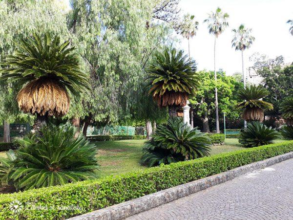 english garden palermo