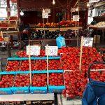 Ce să vizitezi în Palermo și împrejurimi. Ziua 3 – Piețele Capo, Ballaro, Vucciria; Castelul Zisa, Foro Italico