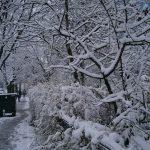 Prima zăpadă din iarna asta :)