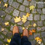 Redescoperă plăcerea mersului pe jos!