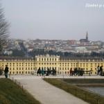 Viena: Palatul Schonbrunn şi Cartierul Muzeelor